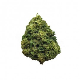 HULK CBD - Fleur de Chanvre